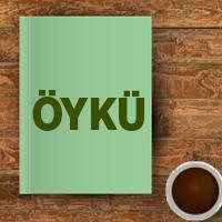Oyku Header